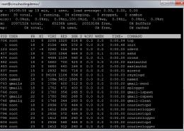 Remote Desktop Access (RDP) by plesk, vps hosting, web hosting